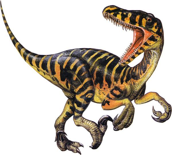 velociraptor-dinosaurs-23564955-817-734