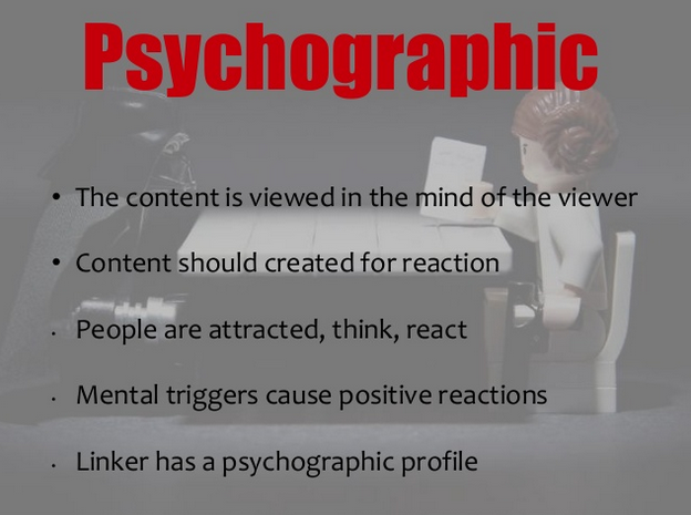 psychographic profile